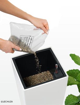 Mitgeliefertes LECHUZA-PON als Pufferschicht auf den Trennboden im Gefäß geben.
