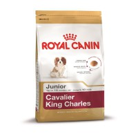Royal Canin Breed Cavalier King Charles Junior 500g