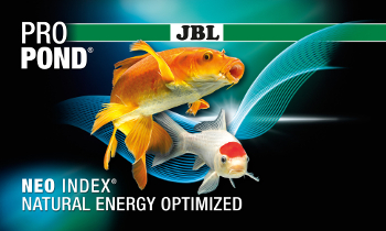 JBL NEO INDEX